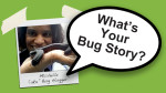 What's your bug story